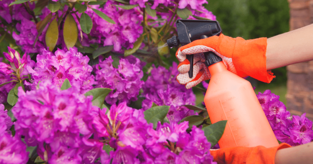 The Danger of Yard Chemicals and How to Live Without Them