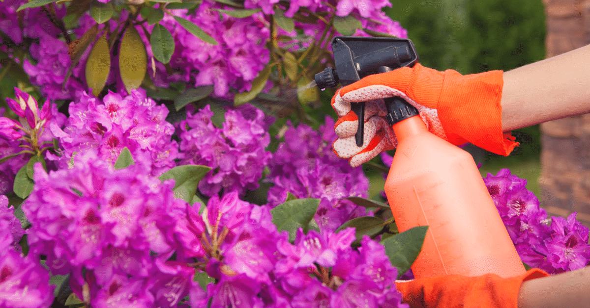 Yard Chemicals Blog Bay Area Plumbing Inc