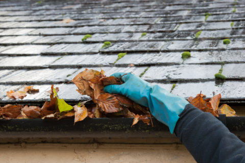 Clearing autumn gutter in rain blocked by leaves with hand to improve pumbling